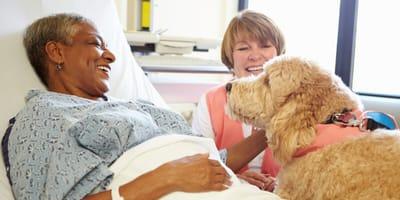 cane-visita-padrona-in-ospedale