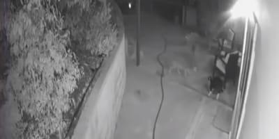Aufnahmen einer Überwachungskamera