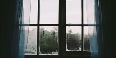 sombra en la ventana