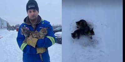 Mezczyzna wylewa kawe na lod by uratowac koty