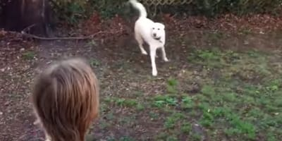 When child sees who's waiting for him in the garden, he bursts into tears