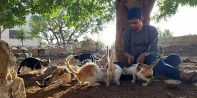 <p>Salah dzieli z kotami piwnicę, w kt&oacute;rej mieszka, i skromne posiłki</p>