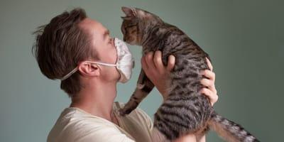 Panico coronavirus: cani e gatti lanciati dagli edifici in Cina