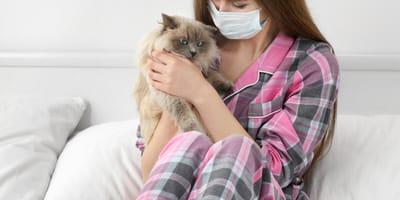 reducir alergia a gatos