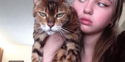 gato enfadado y dueña