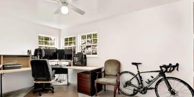 gatos escondidos despacho