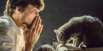 Flauschige Gesellschaft trotz Allergie: Alles über Katzen für Allergiker