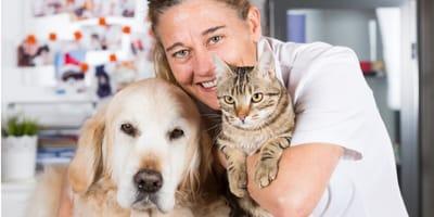 cane-e-gatto-con-veterinaria