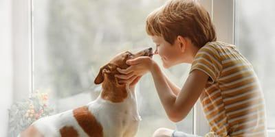 San Valentín, duermen a su perro y lanza un mensaje de amor que estremece al mundo