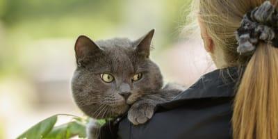 7 cose da non fare MAI con il tuo gatto