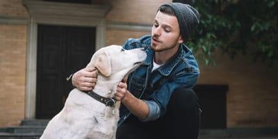 5 errori che non sai di fare quando sgridi il cane