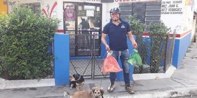 recicla pet y carton para esterilizar mascotas