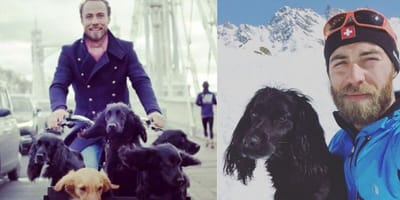 James Middleton and dogs