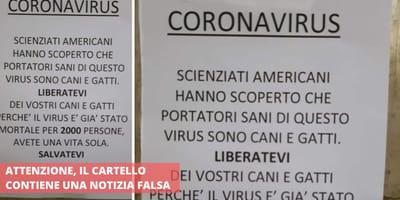 Falso volantino su cani, gatti e Coronavirus gira per i negozi italiani