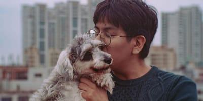 Miasto w Chinach wprowadza zakaz jedzenia psów ze względu na epidemię
