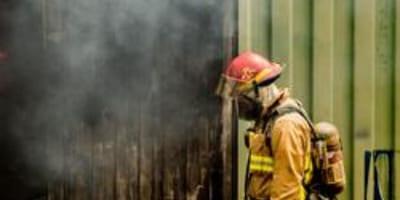 Strażacy podążają tropem emerytowanego owczarka niemieckiego. Gdy docierają do celu, są przerażeni