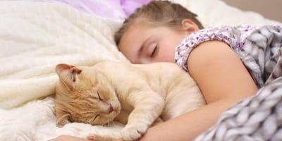 dormir con mi gato es malo