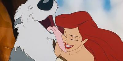 10 excelentes razones para que el perro de la Sirenita siga siendo tu favorito