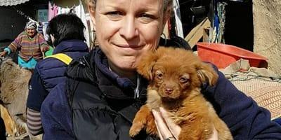 Quarantena per la fondatrice italiana di Save The Dogs in Romania