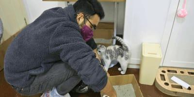 Ye Jialin codziennie wyrusza na pomoc pozostawionym w domach zwierzętom