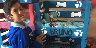niño con discapacidad hace camas para mascotas