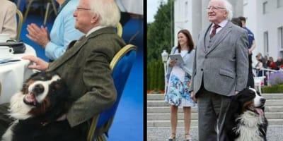 presidente-irlandese-e-il-suo-cane