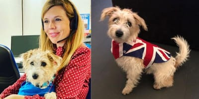 Carrie Symonds and her Jack Russell cross