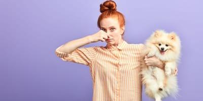 Perché il cane soffre di flatulenza?