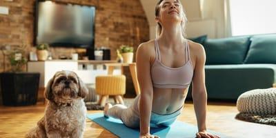 Todos sobre el yoga para perros y sus múltiples beneficios