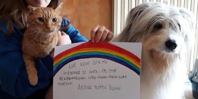 #restiamoacasa: le foto dei fan di Wamiz in quarantena con cani e gatti!
