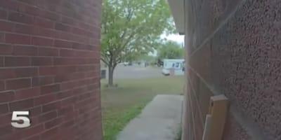 Dzięki kamerze ujęto recydywistę kradnącego paczki. Jego tożsamość zszokowała okolicę