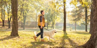 uomo passeggia con il cane