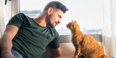 uomo bello con gatto rosso