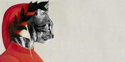 E se la Divina Commedia l'avesse scritta un gatto in zona rossa?