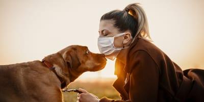 Zwierzęta a koronawirus COVID-19. Na Wasze pytania odpowiada rzecznik Krajowej Izby Lekarsko-Weterynaryjnej