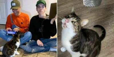 gatto-due-persone-e-microfono