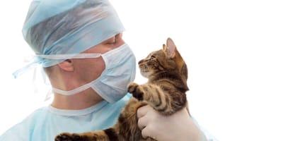 Vets donate medical equipment to help fight against coronavirus