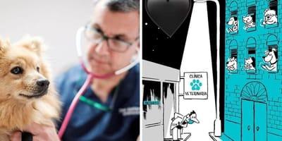 veterinarios crisis coronavirus