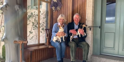 The Royal couple decided to show off their pets