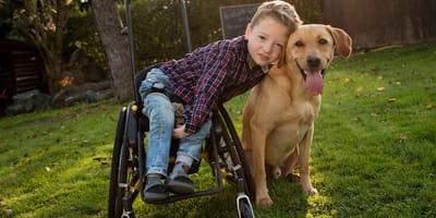 Labrador und kleiner Junge