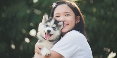 niña china con husky