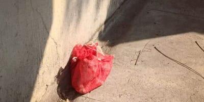 costal de papas en la calle