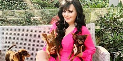 maribel guardia luce vestido con sus perritos en instagram