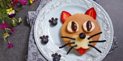 Comida para gato hecha en casa: recetas para no aburrirte en la cuarentena