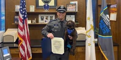 Podczas ceremonii mianowania na psa policyjnego, ten mały labrador doprowadził do śmiechu tysiące osób!