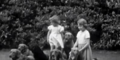 old black and white photo of two girls with labradors and spaniels