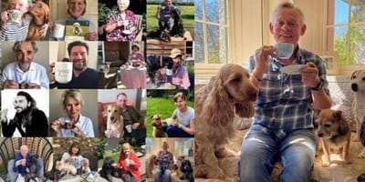 Celebrities take part in virtual tea party to support Guide Dogs Charity