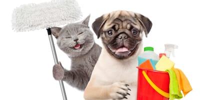 Productos de limpieza para casa con mascotas
