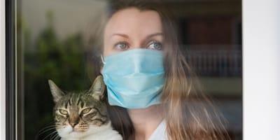 coronavirus positivo con gato