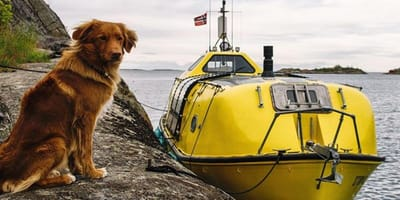 Shackleton the dog sits next to Norway boat